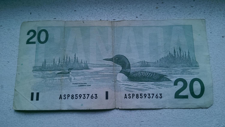 Opțiuni în dolari canadieni